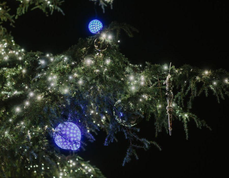 hoa community pine tree with warm white led lights and blue orbs
