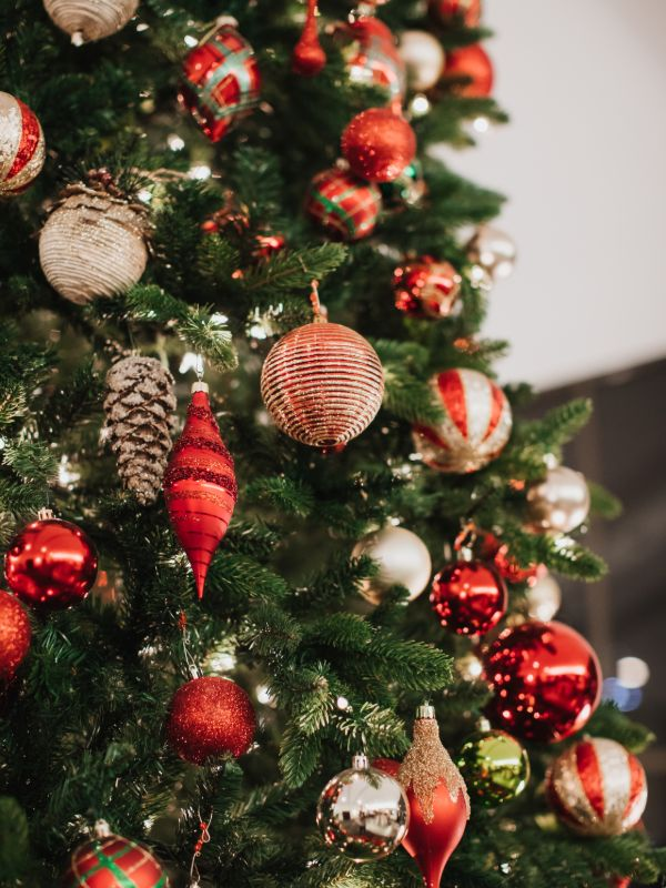 live christmas tree decorated with red and white ornaments