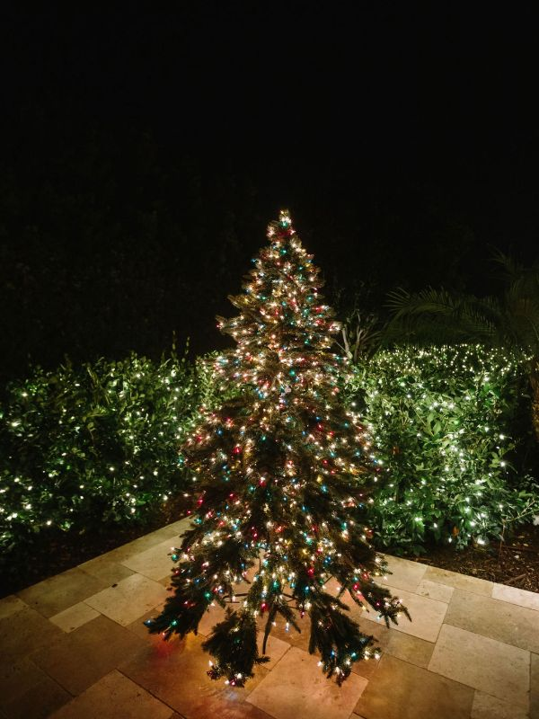 artificial multi color christmas tree with hedge lighting